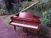 Steinberg-baby-grand- Piano restoration Johannesburg