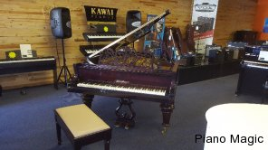 bluthner-grand-piano-magic-looking-Blüthner-for-sale-buy-johannesburg-pretoria-free-state-antique-1