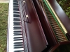 bernard-steiner-Piano-Magic-Restoration-Pretoria